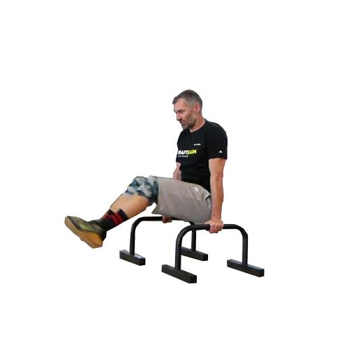 Knee raise Parallettes